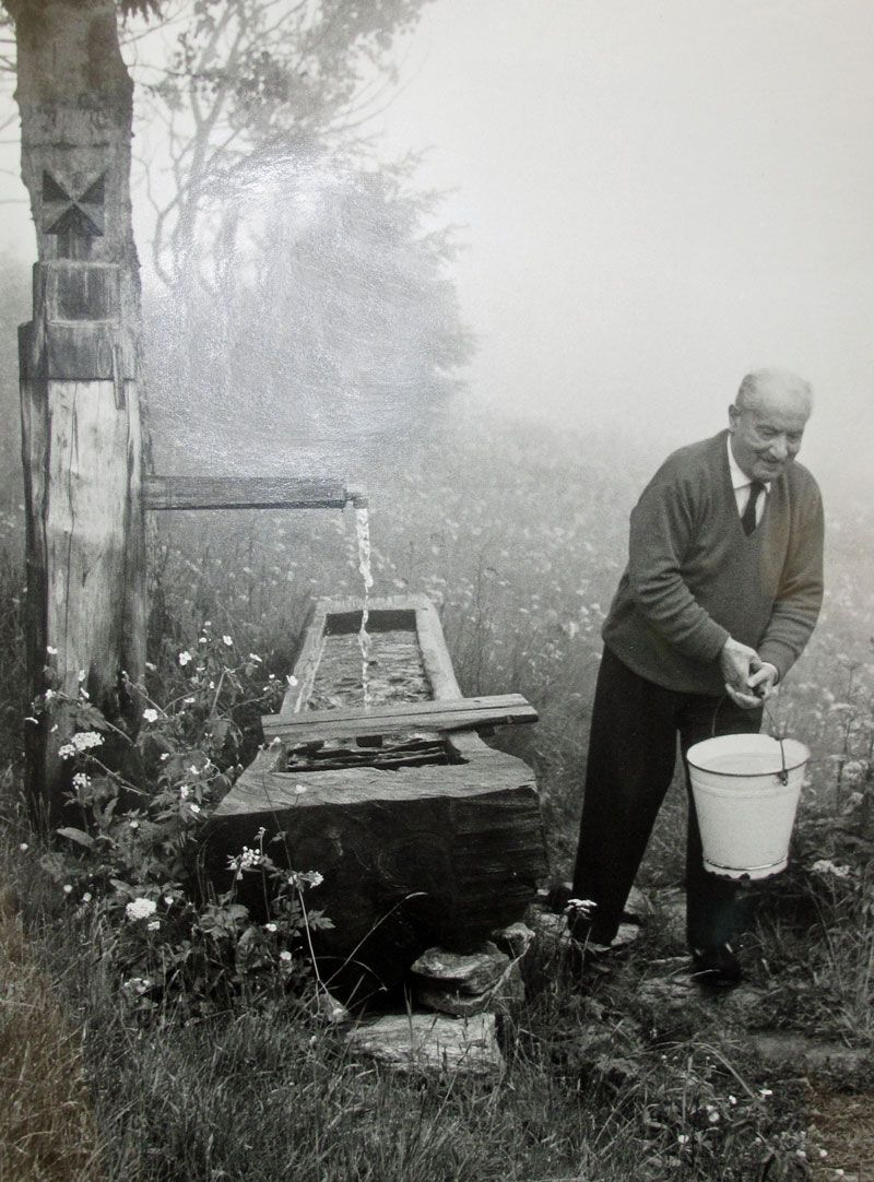 Heidegger at the Well of Being